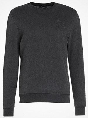 Calvin Klein KAPLER FRENCH Sweatshirt asphalt heather