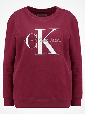 Calvin Klein Jeans TRUE ICON Sweatshirt fig