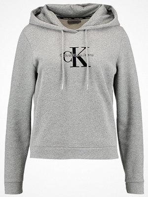 Calvin Klein Jeans HONOR  Sweatshirt light grey heather