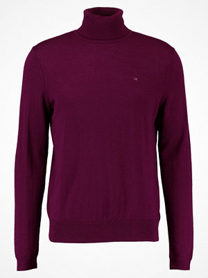 Calvin Klein SPIKE ROLLNECK Stickad tröja valeggio