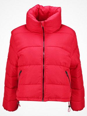Glamorous Petite Vinterjacka red