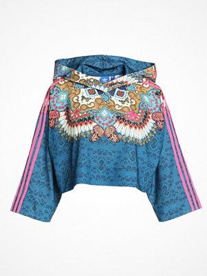 Street & luvtröjor - Adidas Originals BORBOMIX Luvtröja multicolor