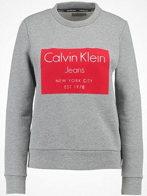 Calvin Klein Jeans HANSI Sweatshirt mid grey heather