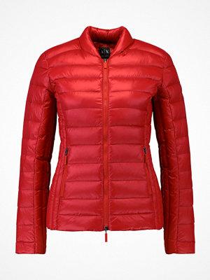 Armani Exchange Dunjacka royal red