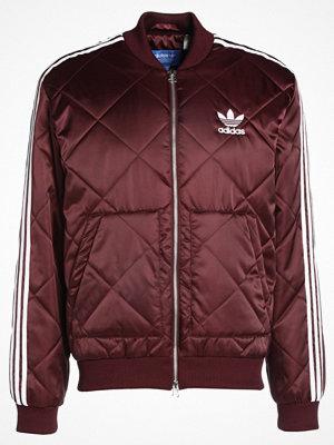 Adidas Originals Bomberjacka maroon