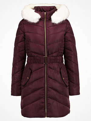 Dorothy Perkins LUXE BELTED PADDED MOVE ON Vinterkappa /rock berry