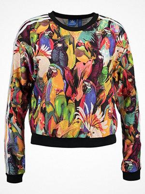 Adidas Originals PASSAREDO Sweatshirt multco