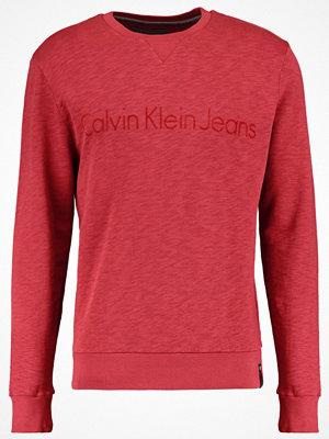 Tröjor & cardigans - Calvin Klein Jeans HATOR Sweatshirt merlot