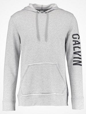 Street & luvtröjor - Calvin Klein Underwear HOODIE Luvtröja grey heather