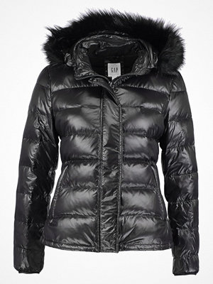 GAP Dunjacka true black