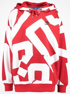 Adidas Originals BOLD AGE  Luvtröja colred/white