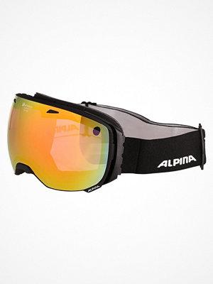 Skidglasögon - Alpina PHEOS QL Skidglasögon black matt