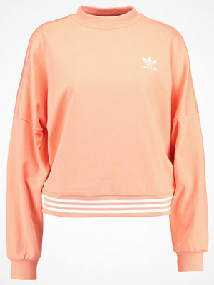 Adidas Originals HU HIKING  Sweatshirt chacor
