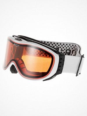 Skidglasögon - Alpina Skidglasögon white
