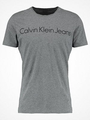 Calvin Klein Jeans TREASURE SLIM FIT Tshirt med tryck grey