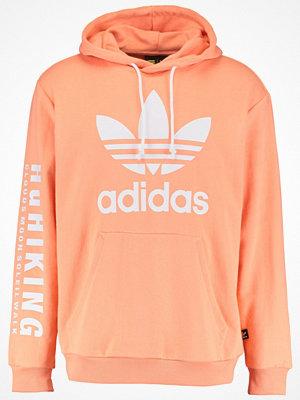 Adidas Originals Sweatshirt chacor