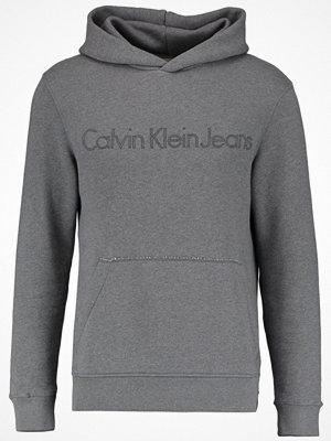 Calvin Klein Jeans HARPO Luvtröja grey