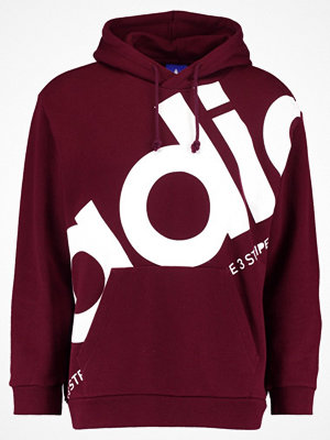 Adidas Originals PETE Luvtröja maroon