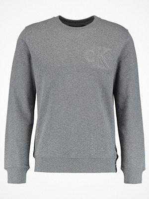 Calvin Klein Jeans HASTO SLIM Sweatshirt grey