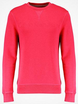 Calvin Klein Jeans HARPO SLIM FIT Sweatshirt purple