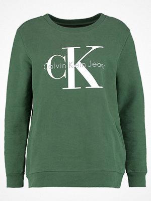 Calvin Klein Jeans CREW NECK TRUE ICON Sweatshirt trekking green