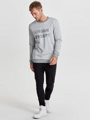 Only & Sons ONSCOLTON EMBROIDERY Sweatshirt griffin