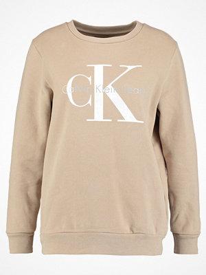 Calvin Klein Jeans CREW NECK TRUE ICON Sweatshirt silver mink