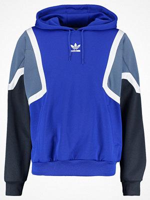 Adidas Originals NOVA Luvtröja bold blue/raw steel