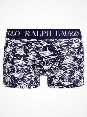 Polo Ralph Lauren Underkläder cruise navy shark