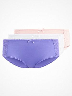 Anna Field 3 PACK Underkläder offwhite/rose/purple