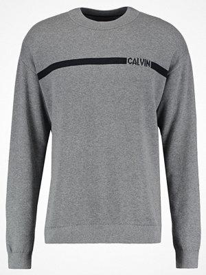 Calvin Klein Jeans STONOS REGULAR FIT LOGO Stickad tröja grey