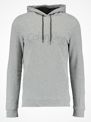 Calvin Klein KAMS FRENCH TERRY HOOD LOGO Sweatshirt grey