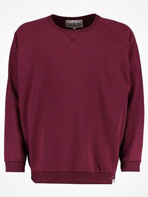 BAD RHINO CREW NECK RAGLAN Sweatshirt burgundy