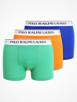 Kalsonger - Polo Ralph Lauren 3 PACK Underkläder sapphire/apple