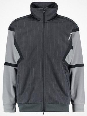 Street & luvtröjor - Adidas Originals TRAINING Sweatshirt dark grey