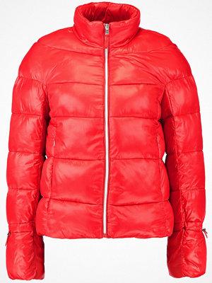 Vero Moda VMRAMONA SORAYA SHORT  Vinterjacka high risk red