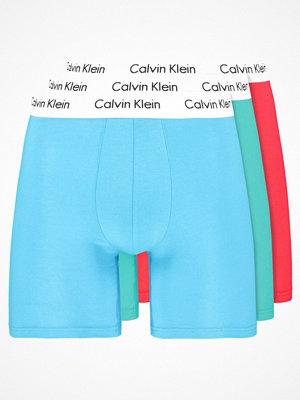 Calvin Klein Underwear BRIEF 3 PACK Underkläder leica/impac