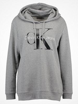 Calvin Klein Jeans HOWARA TRUE ICON HOODY  Luvtröja light grey heather