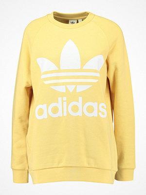 Adidas Originals ADICOLOR OVERSIZED  Sweatshirt sand
