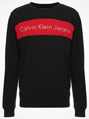 Calvin Klein Jeans HAYO REGULAR FIT Sweatshirt black