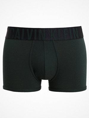 Calvin Klein Underwear INTENSE POWER TRUNK Underkläder green