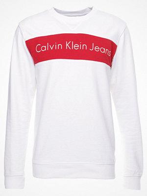 Calvin Klein Jeans HAYO REGULAR FIT Sweatshirt bright white