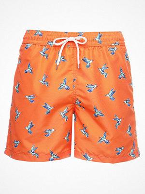Badkläder - Polo Ralph Lauren TRAVELER Surfshorts hummingbirds