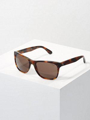Polo Ralph Lauren Solglasögon havana