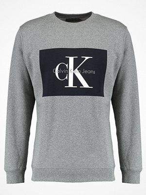 Calvin Klein Jeans HOTORO REGULAR FIT Sweatshirt light grey heather