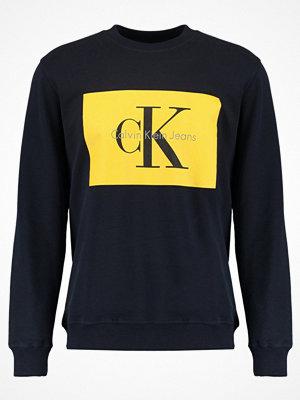 Calvin Klein Jeans HOTORO REGULAR FIT Sweatshirt night sky