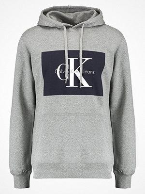 Calvin Klein Jeans HOTORO Luvtröja light grey heather