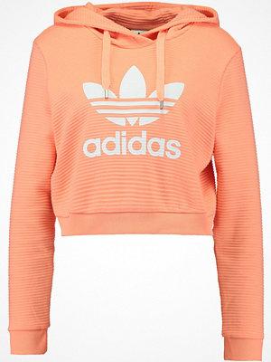 Adidas Originals TREFOIL HOODIE Luvtröja chalk coral