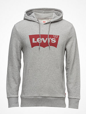 Levi's Graphic Po Hoodie G Graphic Ho