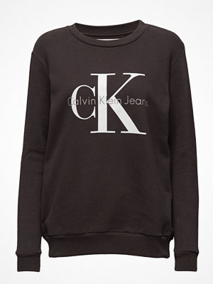 Calvin Klein Jeans Crew Neck Hwk True Icon